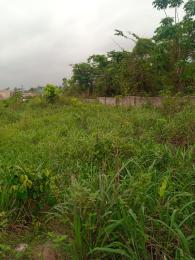 Mixed   Use Land Land for sale Obayantor 1, by sapele road bypass Oredo Edo