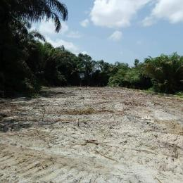 Residential Land Land for sale Victoria Court Estate Epe Road Epe Lagos