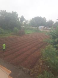 Mixed   Use Land Land for sale Opposite Okpanam junction by express in Okpanam. Asaba Delta