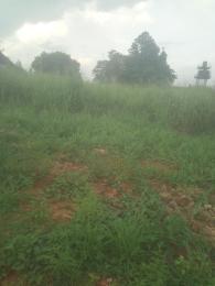 Mixed   Use Land Land for sale Along Asaba-Igbuzor (Ibusa) road by Koka junction,Asaba Asaba Delta