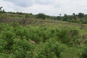 Mixed   Use Land Land for sale mpape Mpape Abuja
