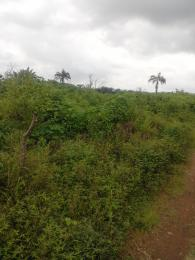 Commercial Land Land for sale Temidire Ibarapa Oyo