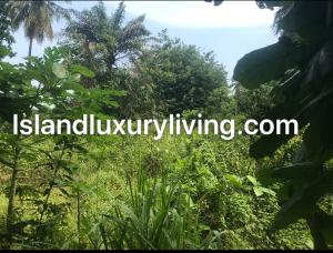 Mixed   Use Land Land for sale Abacha estate 2nd Avenue Extension Ikoyi Lagos