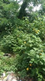 Land for sale Olapade agoro & sharp corner Oluyole Estate Ibadan Oyo