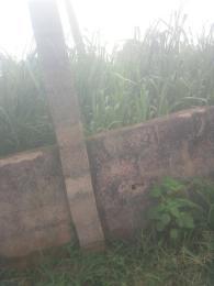 Mixed   Use Land Land for sale Asaba Asaba Delta