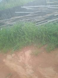 Mixed   Use Land Land for sale Ogwuashi-Ukwu in Aniocha local government area Aniocha South Delta