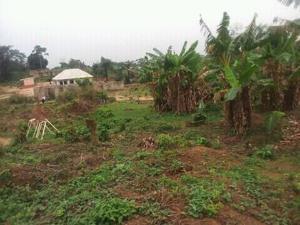 Land for sale Constantial hotel road Oredo Edo