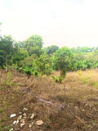 1 bedroom Land for sale Asokoro Abuja