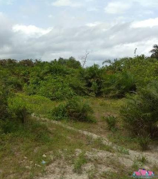 Commercial Land Land for rent - Eleme Port Harcourt Rivers