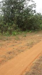 Mixed   Use Land Land for sale 110 Acres of Land for Sale at Shotubo, Sagamu Sagamu Sagamu Ogun