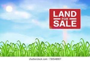Residential Land Land for sale Osapa london Lekki Lagos