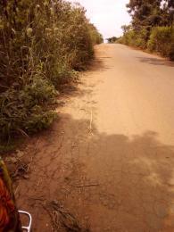 Land for sale  atan village along iseyin/ibadan  Ibadan Oyo