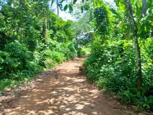 Mixed   Use Land for sale Ibadan Oyo