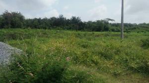 Land for sale Facing Ibadan ife express way Egbeda Oyo