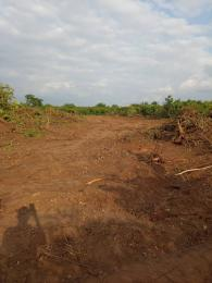 Mixed   Use Land Land for sale On a tarred read  Lokogoma Abuja
