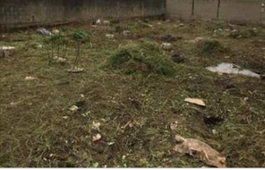 Land for sale Orire local government Ogbomosho Oyo