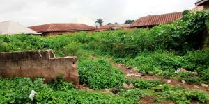 Residential Land Land for sale Beside Federal Housing Low Cost Estate, Edikwu Road Oturkpo Benue