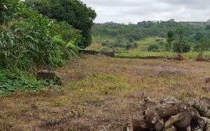 Commercial Land Land for sale Behind Technical School, By Living Faith  Orozo Abuja