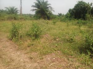 Residential Land Land for sale G.Cappa Estate,  LSDPC Maryland Estate Maryland Lagos