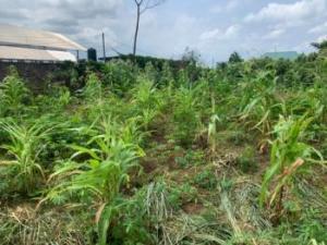 Mixed   Use Land for sale   ONIRU Victoria Island Lagos