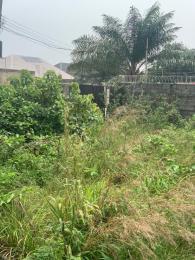 Mixed   Use Land Land for sale greenland estate Ogombo Ajah Lagos