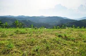 Mixed   Use Land Land for sale Osborne 1 Osborne Foreshore Estate Ikoyi Lagos