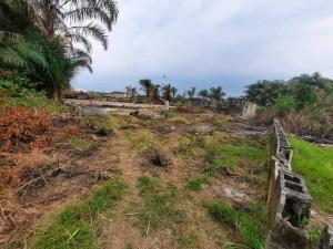 Residential Land Land for sale Alaka/Iponri Surulere Lagos