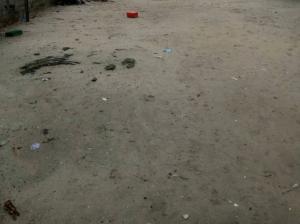 Land for sale Ajose Adeogun Victoria Island Lagos