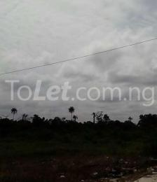 Land for sale Eruemukokwamre- Agbarho expressway Ughelli South Delta
