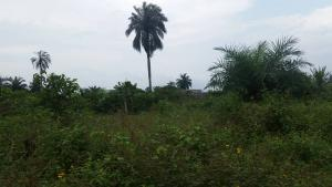 Commercial Land Land for sale New road, Omuoko Aluu  Ikwerre Rivers