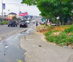 Mixed   Use Land for sale Before Rumuogba Bridge Port-harcourt/Aba Expressway Port Harcourt Rivers