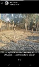 Mixed   Use Land Land for sale Idi ishin Jericho Ibadan Oyo