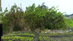 Land for sale WESTEND ESTATE Ikota Lekki Lagos