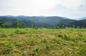 Mixed   Use Land Land for sale Ahmadu Bello Way Victoria Island Lagos