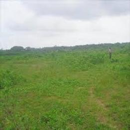 Land for sale Presidential Villa Asokoro Abuja