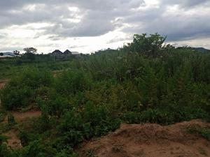 Commercial Land Land for rent Amac Fha Lugbe Abuja