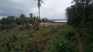 Land for sale Alakia express along old ife express road Egbeda Oyo