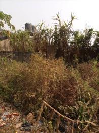 Land for sale Ife-ibadan Express Way Egbeda Oyo
