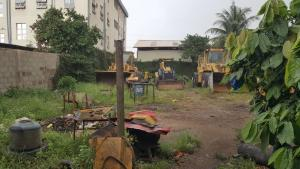 Commercial Property for sale LAGOS ABEOKUTA EXPRESS ROAD  Abule Egba Abule Egba Lagos