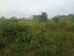 Mixed   Use Land Land for sale Along Arepo Main road, land is facing the road directly Arepo Arepo Ogun