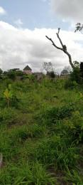Residential Land Land for sale Avu Off Port Harcourt Road Owerri Owerri Imo