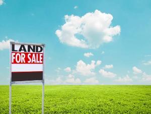 Residential Land Land for sale Royal Haven Garden Estate Ise town Ibeju-Lekki Lagos