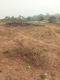 Mixed   Use Land Land for sale Igbatoro Road Akure Ondo