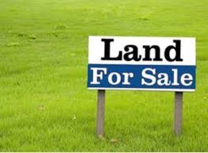 Commercial Land Land for sale Before Blenco Supermarket Sangotedo Ajah Lagos