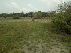 Residential Land Land for sale Okanla Around Olokanla Orolu Osun