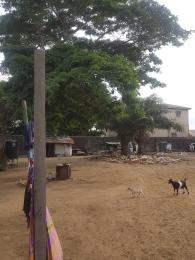 2 bedroom Mixed   Use Land for sale Thomas Estate Thomas estate Ajah Lagos