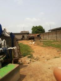 Land for sale Around Seliat Egbeda Lagos