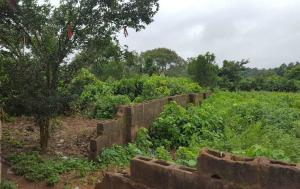 Residential Land Land for sale - Akobo Ibadan Oyo