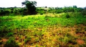 Residential Land Land for sale OBUAMA Oyigbo Rivers