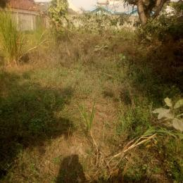 Commercial Land Land for sale Okota road Ago palace Okota Lagos